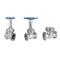 DSI Cast Steel Carbon and Stainless Steel Gate, Globe and Check Valves