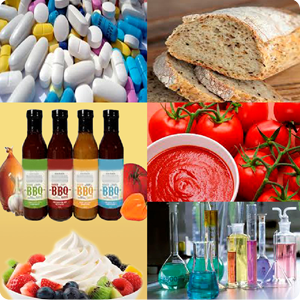 HALESON expertise for food, sauce, mayonnaise, vinegar, icing, honey, oil, spice, ingredient making and processing industry